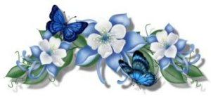 bluebutterflies
