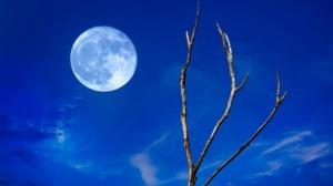 moon-blue