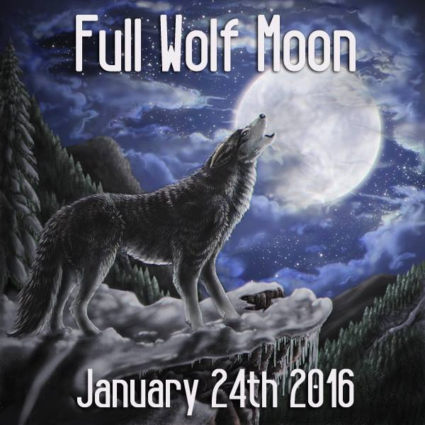 Full Wolf Moon In Leo | Written by LISA MARINO
