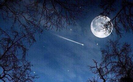 Full Wolf Moon In Leo | Written by LISA MARINO