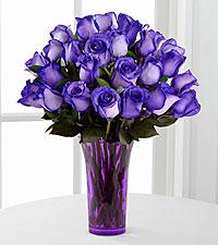 purple-roses