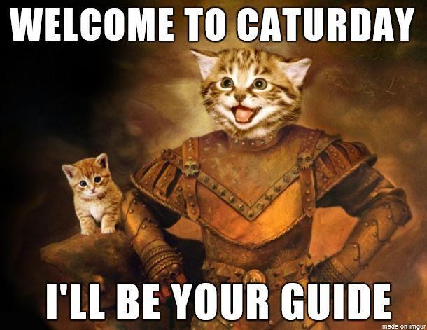 caturdayguide