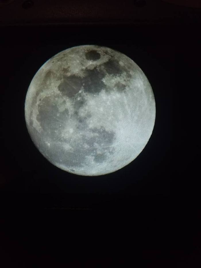 bluemoon1
