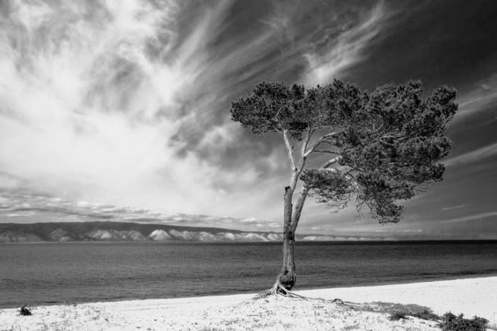 lake-baikal-scenery-768x512