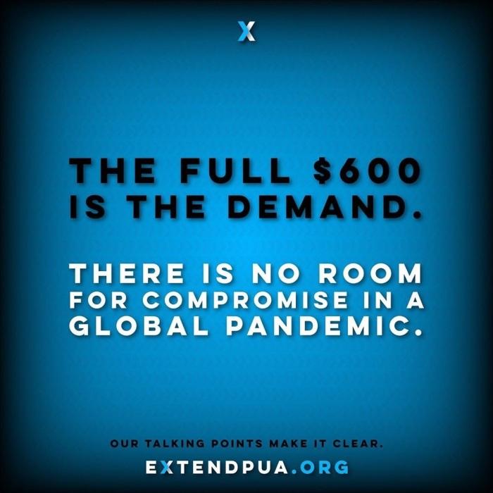 extendpua-1595878991293